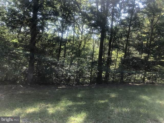 Little Place, FRONT ROYAL, VA 22630 (#VAWR2000758) :: Dart Homes