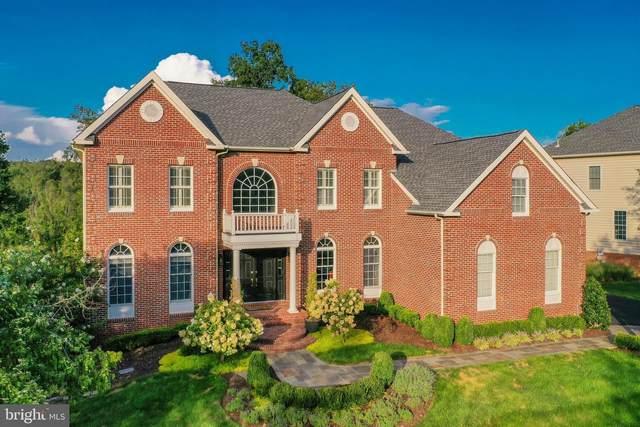 19598 Saratoga Springs Place, ASHBURN, VA 20147 (#VALO2007224) :: Debbie Dogrul Associates - Long and Foster Real Estate