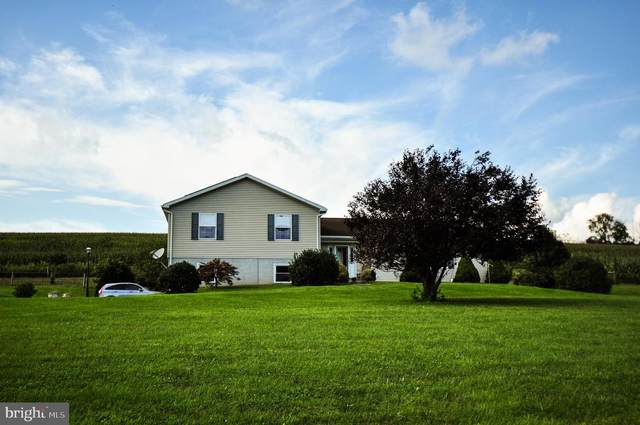 3909 Sweet Arrow Lake Road, PINE GROVE, PA 17963 (#PASK2001222) :: The Craig Hartranft Team, Berkshire Hathaway Homesale Realty