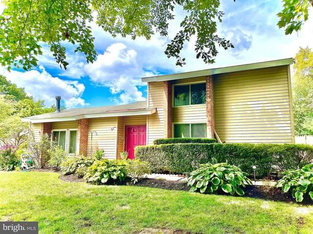 2 Biscayne Place, STERLING, VA 20164 (#VALO2007288) :: Debbie Dogrul Associates - Long and Foster Real Estate