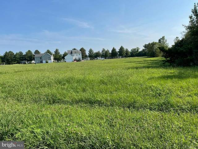 5 St. Stevens Ally, EAST NEW MARKET, MD 21631 (#MDDO2000588) :: McClain-Williamson Realty, LLC.