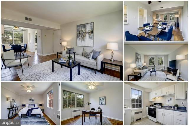 6619 10TH Street B1, ALEXANDRIA, VA 22307 (#VAFX2018922) :: Debbie Dogrul Associates - Long and Foster Real Estate