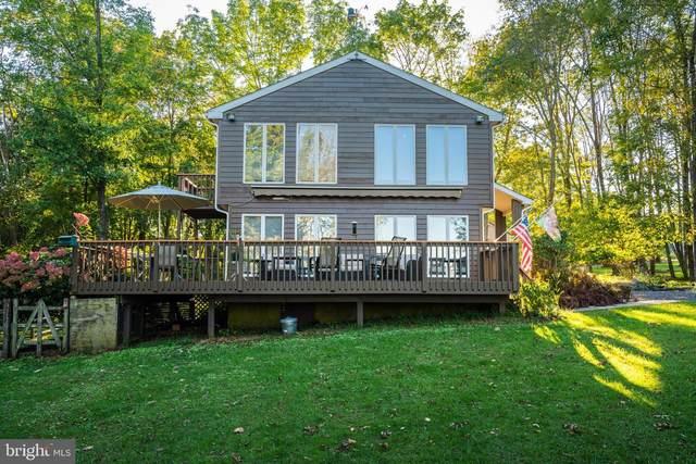 101 Lodi Hill Road, UPPER BLACK EDDY, PA 18972 (MLS #PABU2006950) :: Kiliszek Real Estate Experts