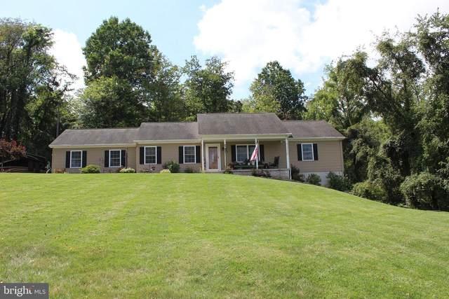 118 Dorsey Lane, DILLSBURG, PA 17019 (#PAYK2005424) :: The Joy Daniels Real Estate Group
