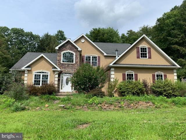 705 Walnut Lane, POTTSVILLE, PA 17901 (#PASK2001254) :: The Craig Hartranft Team, Berkshire Hathaway Homesale Realty