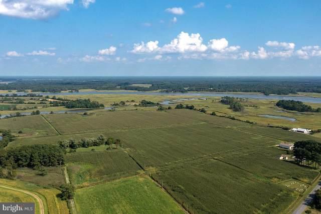 0 Whitehaven Road, TYASKIN, MD 21865 (#MDWC2001282) :: McClain-Williamson Realty, LLC.