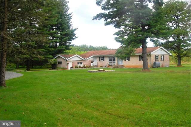 7205 Graces Quarters Road, MIDDLE RIVER, MD 21220 (#MDBC2009838) :: The Dailey Group