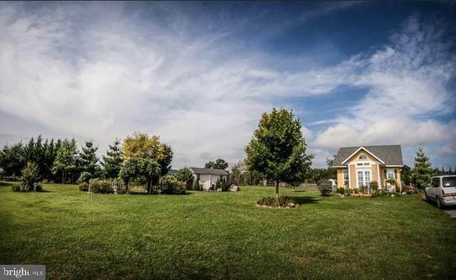 927 Kibler Road, QUICKSBURG, VA 22847 (#VASH2000876) :: Dart Homes