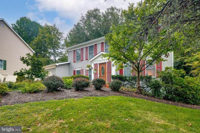 12109 Blue Flag Way, COLUMBIA, MD 21044 (#MDHW2004536) :: SURE Sales Group
