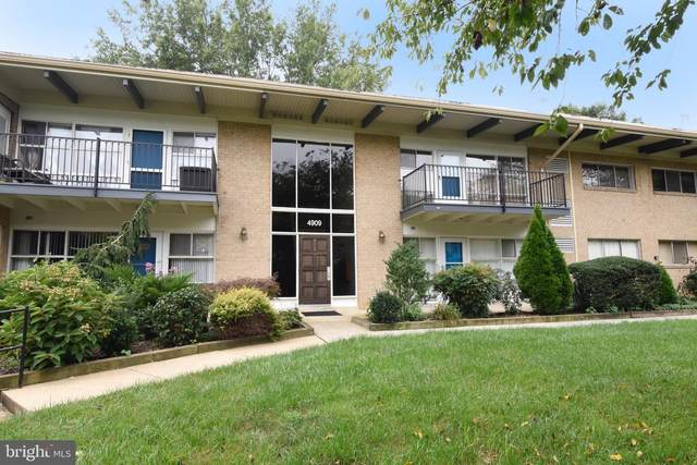 4909 Americana Drive 4909G, ANNANDALE, VA 22003 (#VAFX2019962) :: Debbie Dogrul Associates - Long and Foster Real Estate