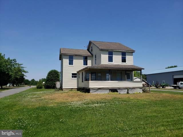 3163 Main Street, FREDERICA, DE 19946 (#DEKT2002774) :: Linda Dale Real Estate Experts