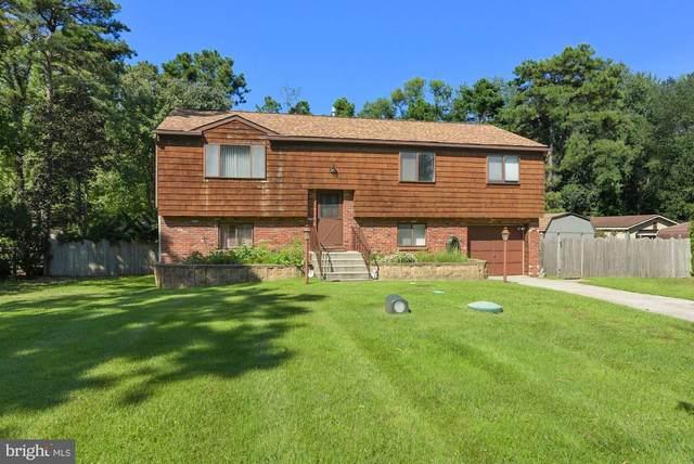 916 Pinewood Lane, ATCO, NJ 08004 (MLS #NJCD2006804) :: The Dekanski Home Selling Team
