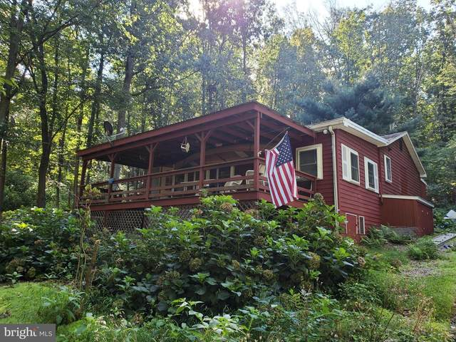 178 Wildcat Trail, LIVERPOOL, PA 17045 (#PAPY2000432) :: TeamPete Realty Services, Inc