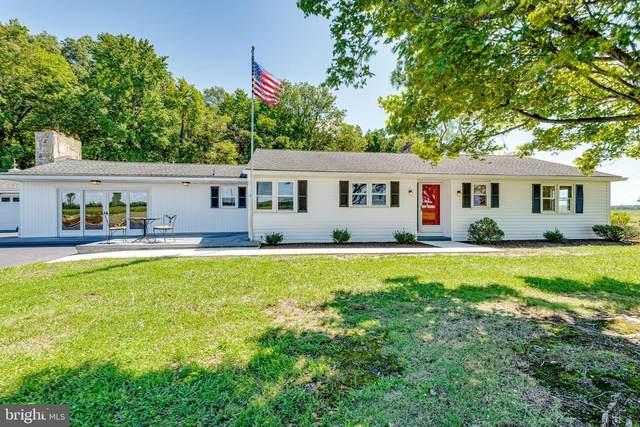1519 Goldsboro Road, INGLESIDE, MD 21644 (#MDQA2000986) :: Pearson Smith Realty