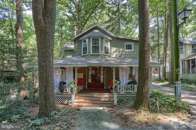 411 2ND Street, MOUNT GRETNA, PA 17064 (#PALN2001478) :: Liz Hamberger Real Estate Team of KW Keystone Realty