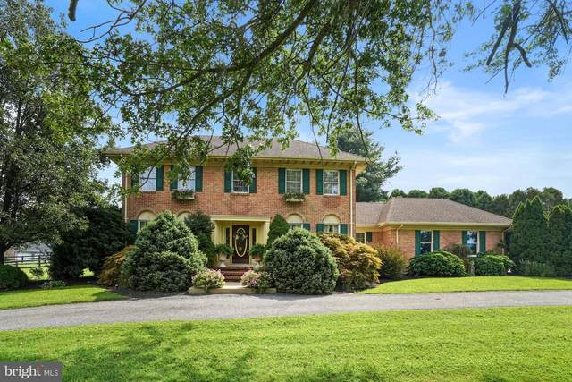 142 Springfield Drive, NORTH EAST, MD 21901 (#MDCC2001532) :: Realty Executives Premier