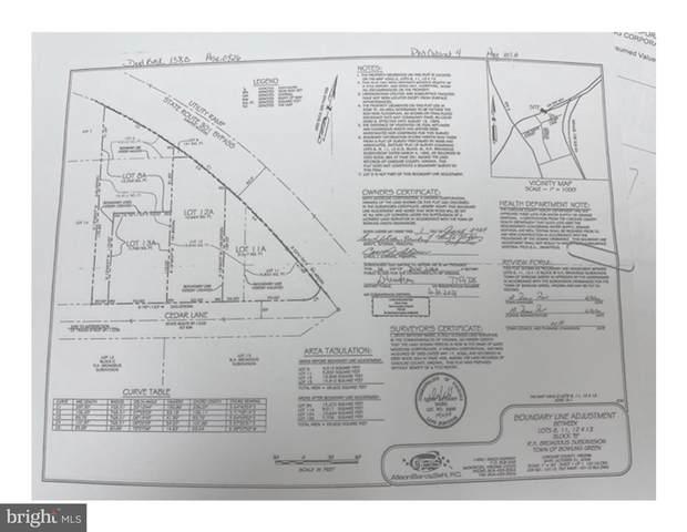 Cedar Lane, BOWLING GREEN, VA 22427 (#VACV2000484) :: Crews Real Estate