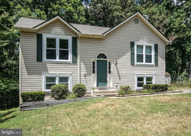 53 Willow Branch Place, FREDERICKSBURG, VA 22405 (#VAST2003332) :: The Vashist Group