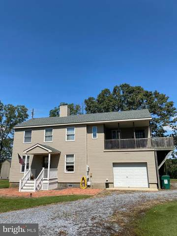 1840 White Haven Drive, CHURCH CREEK, MD 21622 (#MDDO2000648) :: McClain-Williamson Realty, LLC.