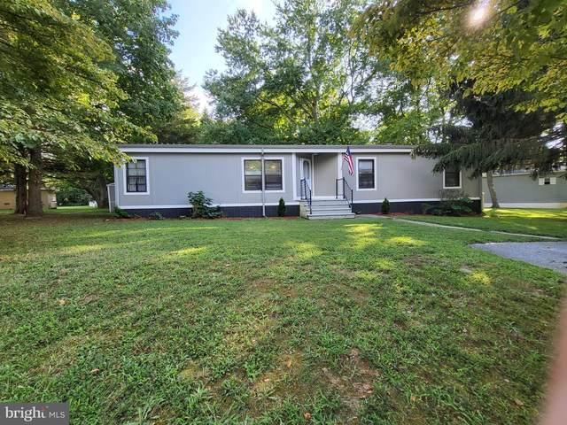 1 Holly Hill Drive, SMYRNA, DE 19977 (#DEKT2002848) :: Your Home Realty