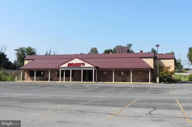 9009 Bridge Street, HUMMELSTOWN, PA 17036 (#PADA2003400) :: The Joy Daniels Real Estate Group