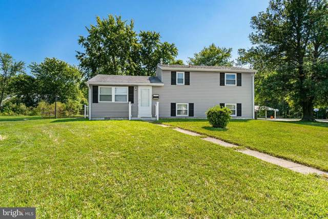 20 Chestnut Drive, ELKTON, MD 21921 (#MDCC2001554) :: Realty Executives Premier