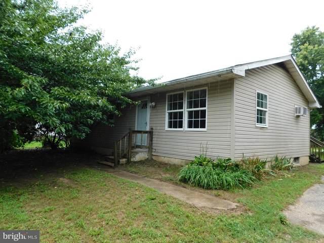 20989 Cubbage Pond Road, LINCOLN, DE 19960 (#DESU2006142) :: McClain-Williamson Realty, LLC.