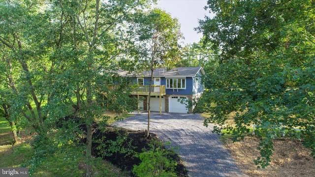 79-B Matamoras Road, HALIFAX, PA 17032 (#PADA2003434) :: The Craig Hartranft Team, Berkshire Hathaway Homesale Realty