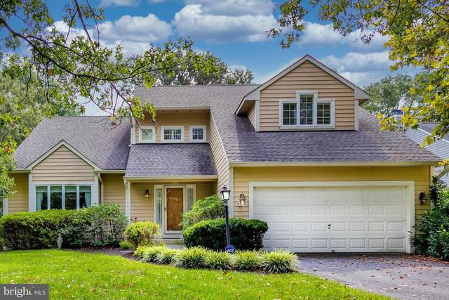 8307 Winter Wind Court, ELLICOTT CITY, MD 21043 (#MDHW2004792) :: RE/MAX Advantage Realty