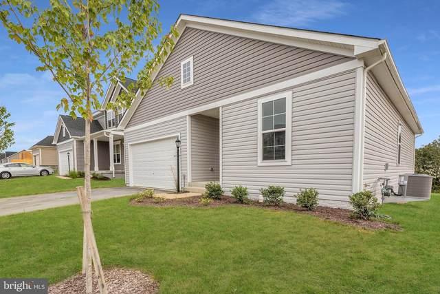 307 Norland Knoll Drive, STEPHENSON, VA 22656 (#VAFV2001762) :: Pearson Smith Realty