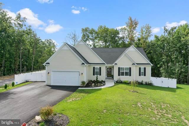11500 White Ash Court, FREDERICKSBURG, VA 22407 (#VASP2002786) :: Great Falls Great Homes