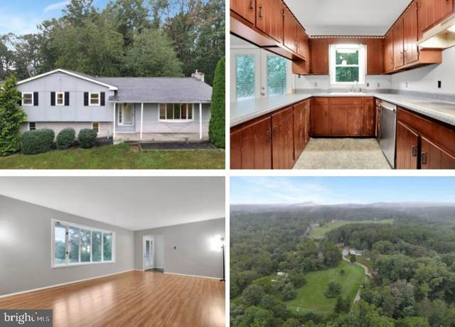 11671 Big Pool Road, CLEAR SPRING, MD 21722 (#MDWA2002196) :: Ultimate Selling Team