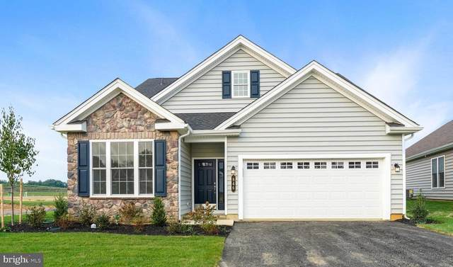 846 Founders Way, EAST PETERSBURG, PA 17520 (#PALA2005158) :: The Heather Neidlinger Team With Berkshire Hathaway HomeServices Homesale Realty