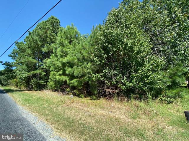 Parcel 280 Mahlon Price Road, DEAL ISLAND, MD 21821 (#MDSO2000700) :: Bright Home Group