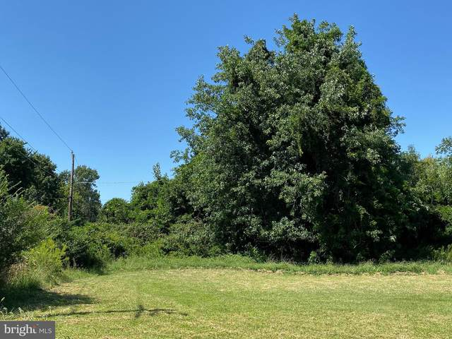 Parcel 351 Toddville Road, DEAL ISLAND, MD 21821 (#MDSO2000704) :: Bright Home Group