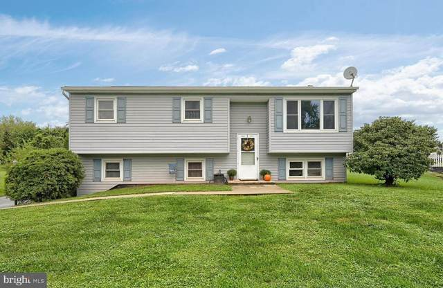283 Kernel Lane, ETTERS, PA 17319 (#PAYK2006066) :: TeamPete Realty Services, Inc