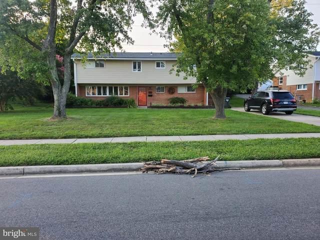 4602 Apple Tree Drive, ALEXANDRIA, VA 22310 (#VAFX2021662) :: Colgan Real Estate