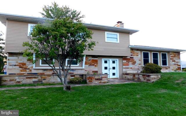 22818 New Shawnee Road SW Sw, WESTERNPORT, MD 21562 (#MDAL2000888) :: New Home Team of Maryland