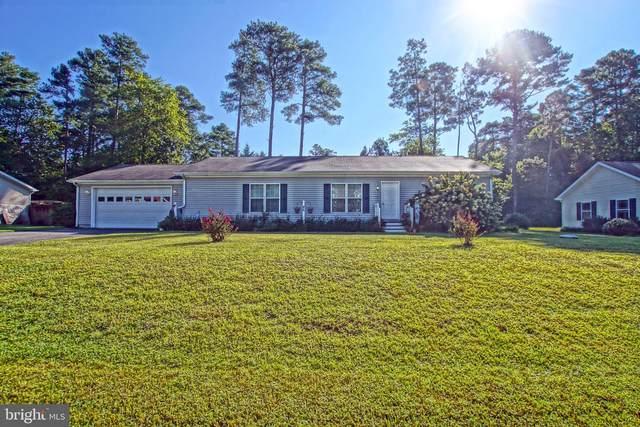 86 Lake Shore Drive, LEWES, DE 19958 (#DESU2006378) :: Linda Dale Real Estate Experts