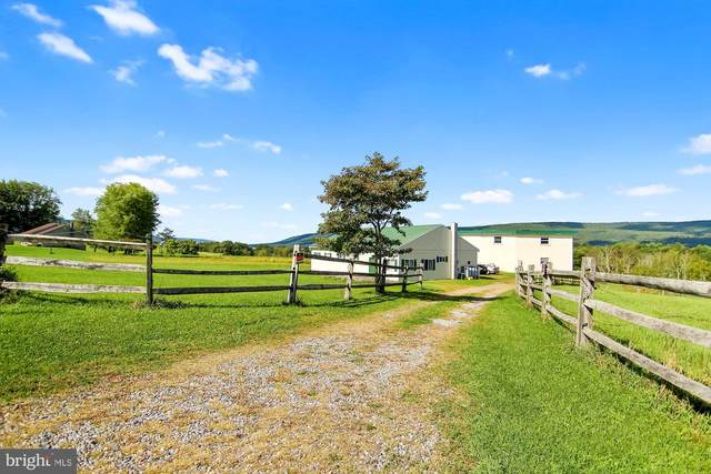 493 Hill Road, HEGINS, PA 17938 (#PASK2001416) :: The Lux Living Group
