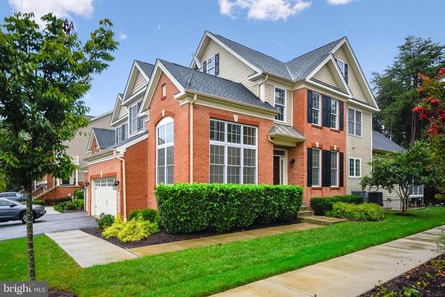 1335 Grand Canopy Drive, SEVERN, MD 21144 (#MDAA2009970) :: The Paul Hayes Group | eXp Realty