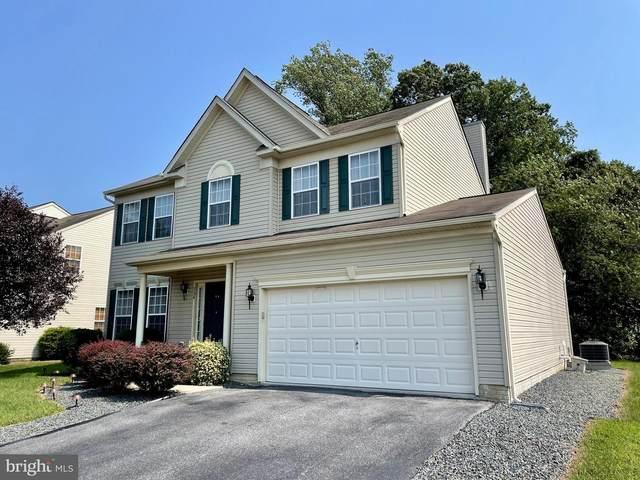234 Climbing Vine Avenue, SMYRNA, DE 19977 (#DEKT2003018) :: New Home Team of Maryland