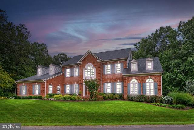 13745 Balmoral Greens Avenue, CLIFTON, VA 20124 (#VAFX2022004) :: Bruce & Tanya and Associates