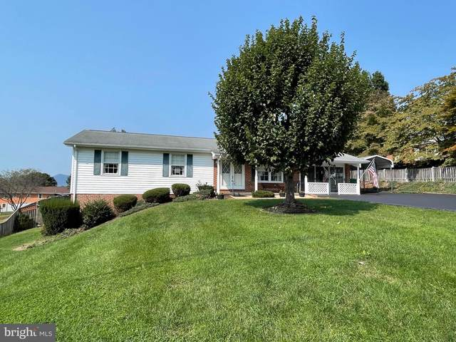19 Canaan Street, LURAY, VA 22835 (#VAPA2000288) :: Shamrock Realty Group, Inc