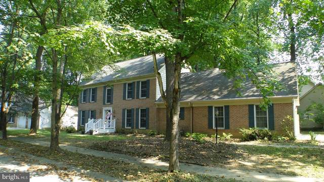 7535 Summer Leave Lane, COLUMBIA, MD 21046 (#MDHW2004970) :: Shawn Little Team of Garceau Realty