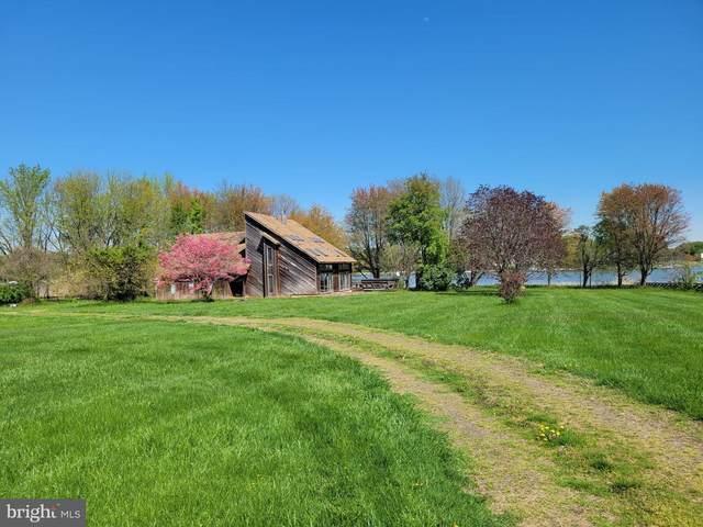85 Long Creek Drive, STEVENSVILLE, MD 21666 (#MDQA2001054) :: Shamrock Realty Group, Inc