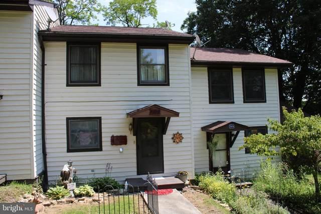 56 B Baneberry Lane, TERRA ALTA, WV 26764 (#WVPR2000030) :: Dart Homes
