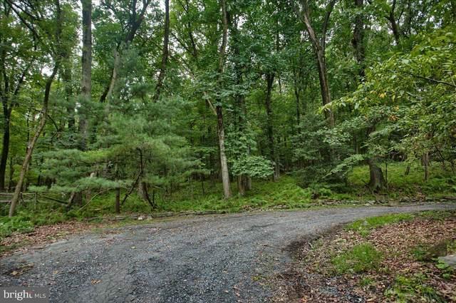N Clark Road, HUMMELSTOWN, PA 17036 (#PADA2003692) :: The Casner Group