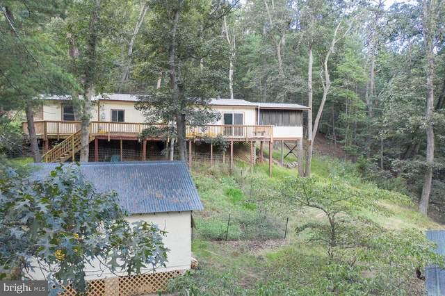 14 Yellow Pine Lane, MOUNT JACKSON, VA 22842 (#VASH2000972) :: Dart Homes