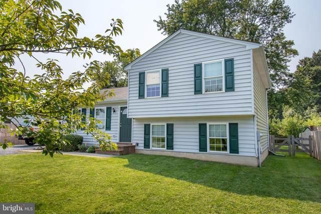 25131 Smithville Road, WORTON, MD 21678 (#MDKE2000496) :: Dart Homes
